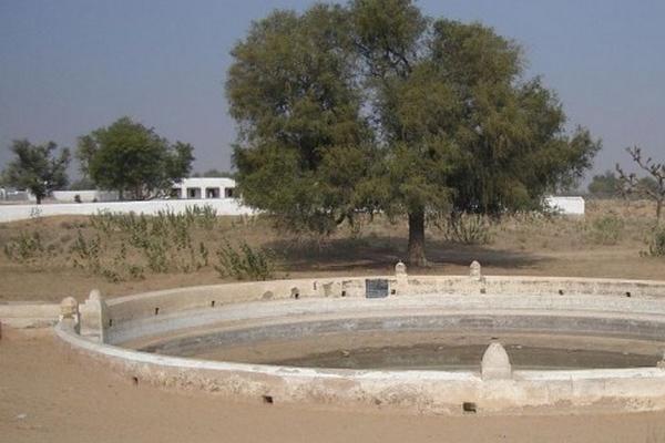 Rajendra Singh restaurer le cycle de l'eau grâce à la Johad