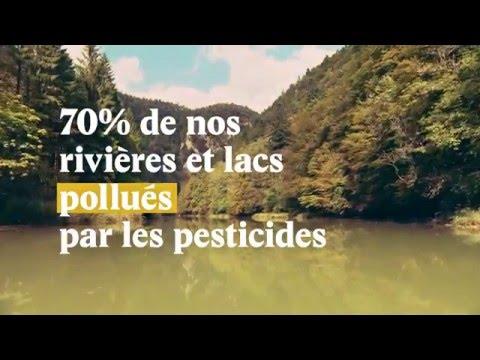 Trop de pesticides en Suisse