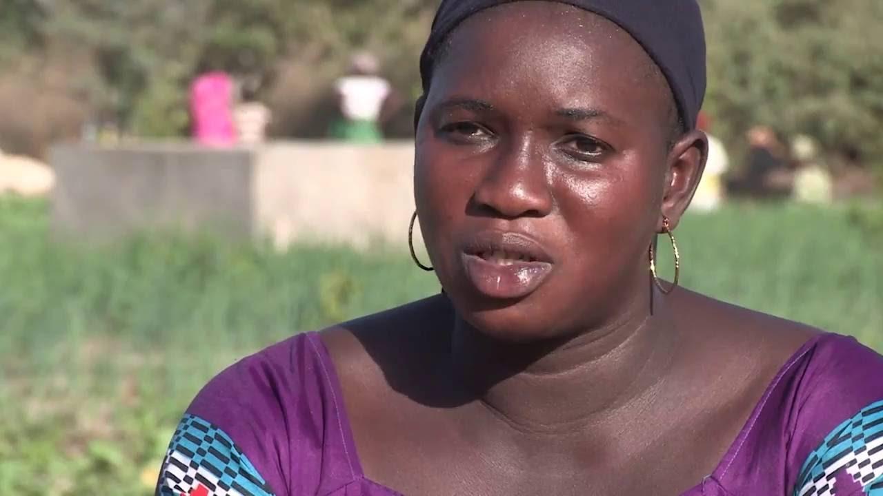 Agriculture familiale : des marchés bio au Sénégal