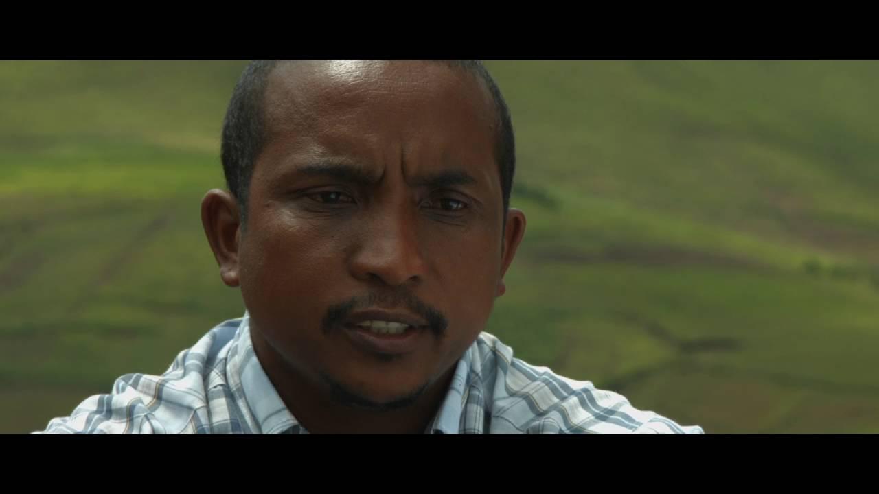 Agroécologie et foresterie à Madagascar