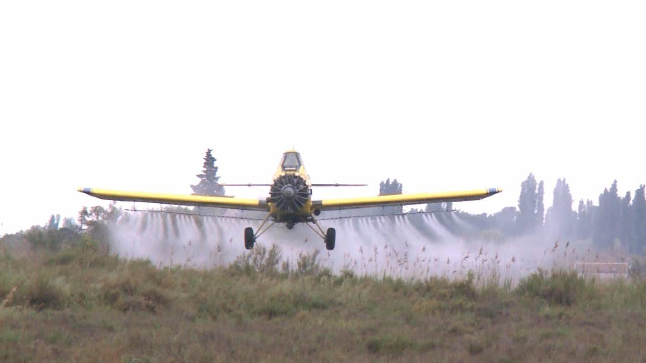 Démoustication : les épandages d'insecticide déséquilibrent les écosystèmes